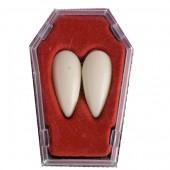 Два клыка вампира